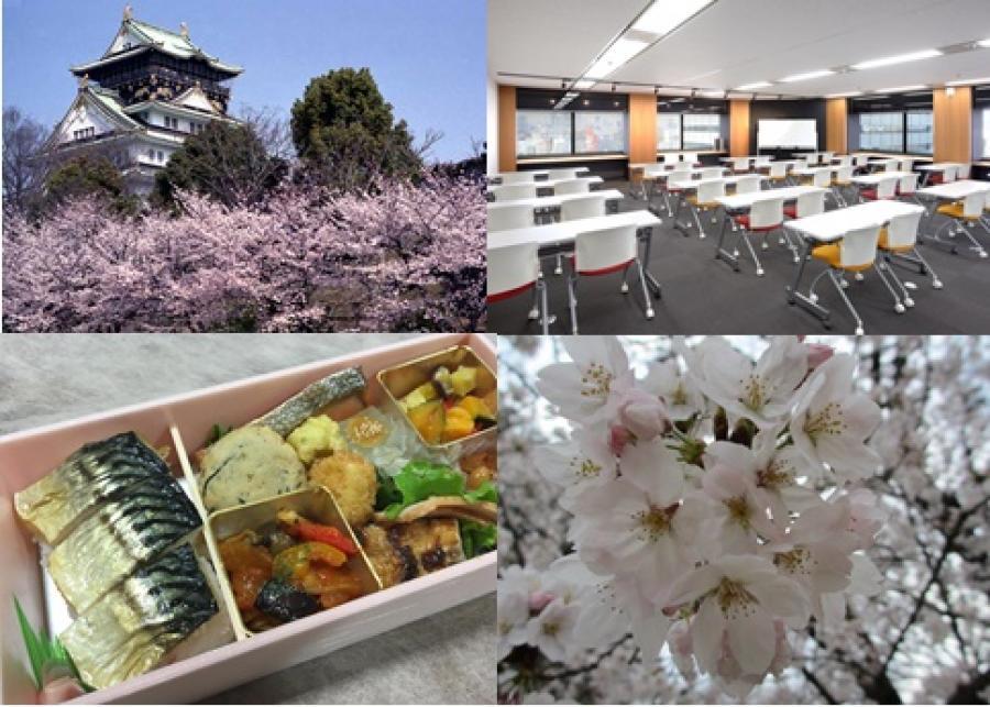 OBPアカデミア会議室桜満開パック