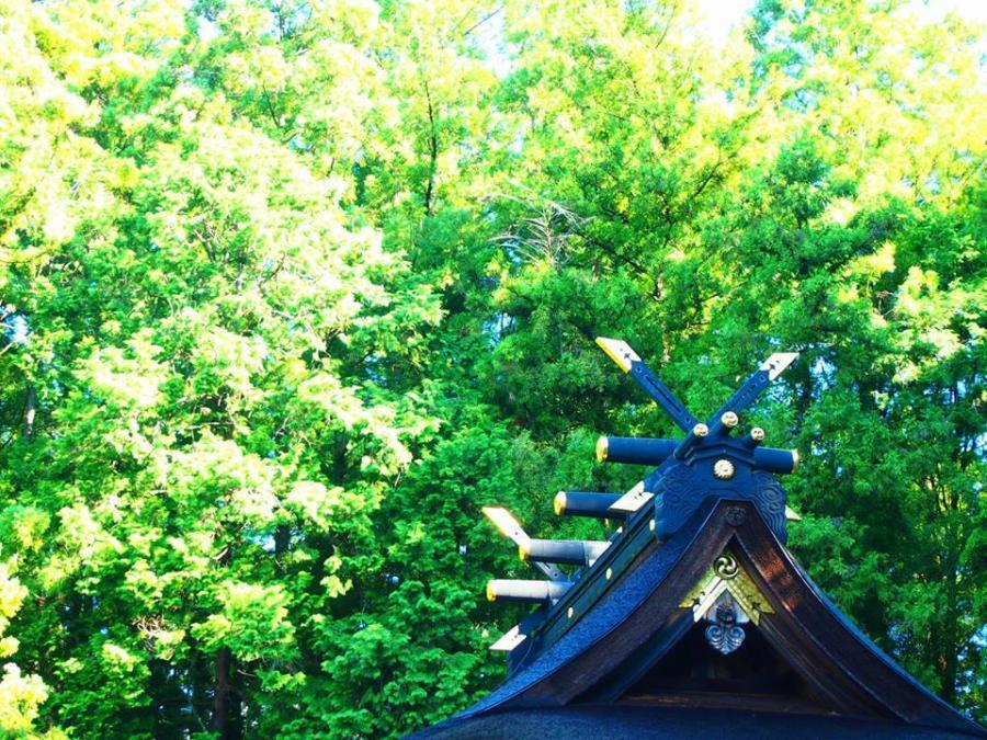 ビジネスで活かす!日本の神話 その四