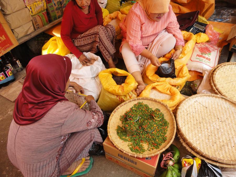 ダイバーシティ推進準備会主催 第2回女性交流会「世界ライフスタイル図鑑 東南アジアの女性の生き方・働き方」