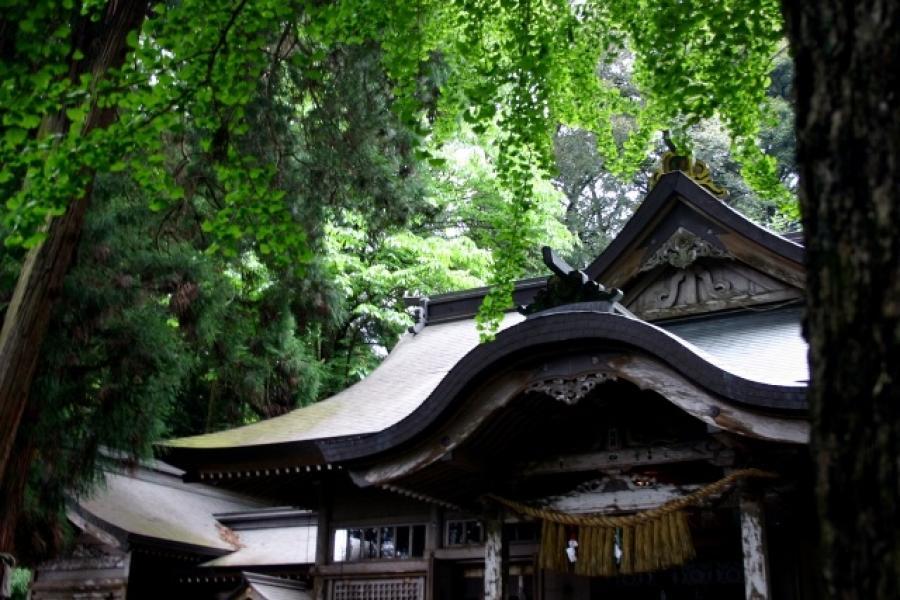 ビジネスで活かす!日本の神話