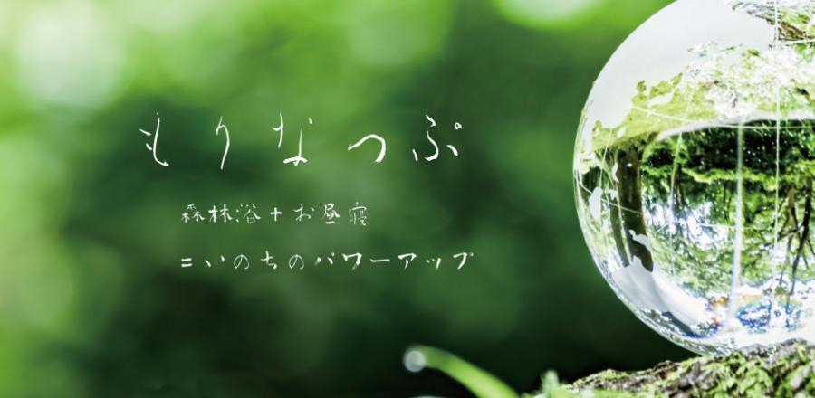 「いのち」のパワーアップ森林浴+お昼寝『もりなっぷ』(8月)