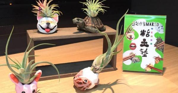 乾真希先生の粘土造形塾『エアープランツホルダーを作ろう!』を開催しました!