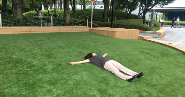 ツイン21に芝生