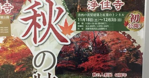 京都 イベント